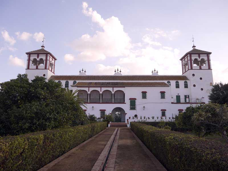 Oleoturismo en sevilla hacienda guzmn - Hacienda la boticaria sevilla ...